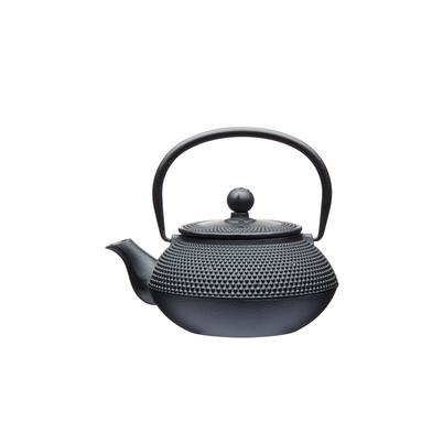 LeXpress 600ml Cast Iron Infuser Teapot